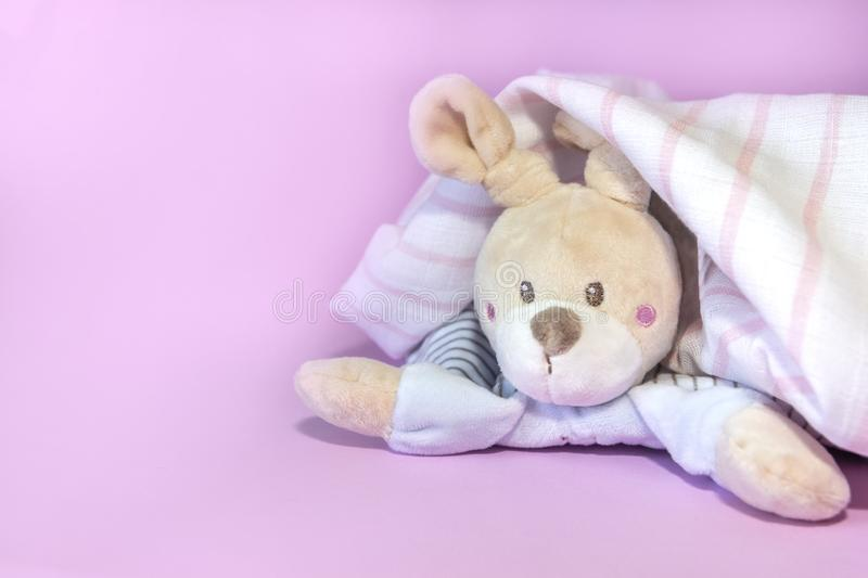 Funny newborn baby toys, teddy hare peeking out from under towel after shower on pink background. Copy space, flat lay, top view royalty free stock photo