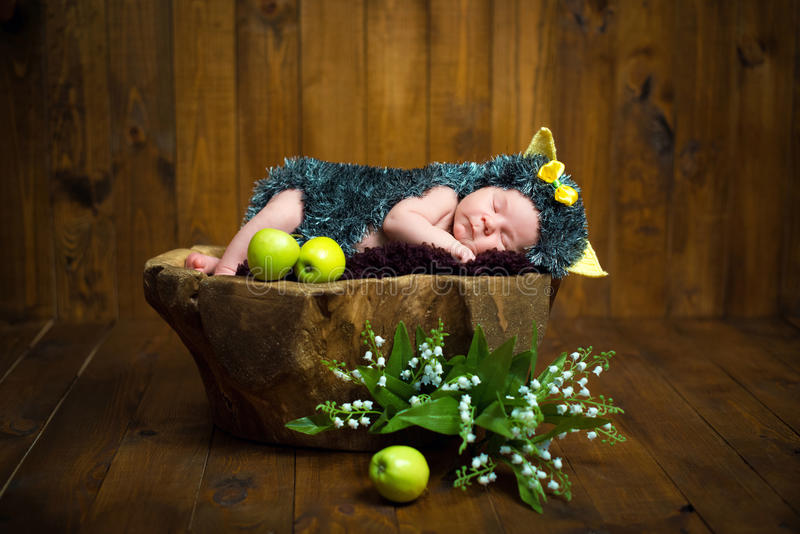 Funny newborn little baby girl in a costume of hedgehog sleeping sweetly on the stump royalty free stock image