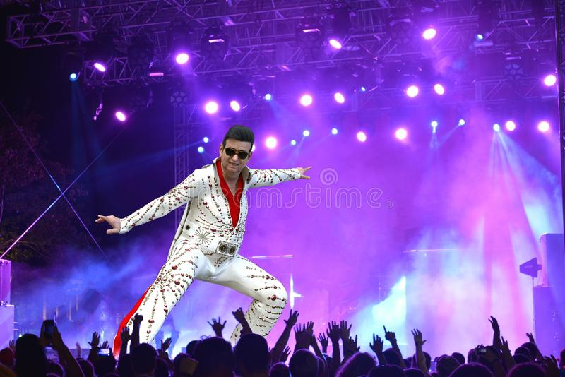 Funny Old Aging Elvis, Rock Concert, Singer, Entainer. Cartoon illustration of an old, aging Elvis singer in a rock and roll concert. The singer and entertainer vector illustration