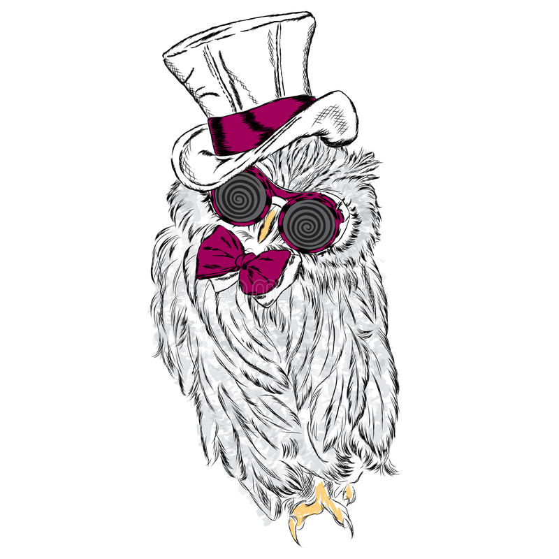 Funny owl in an unusual hat and sunglasses. Vector illustration stock illustration