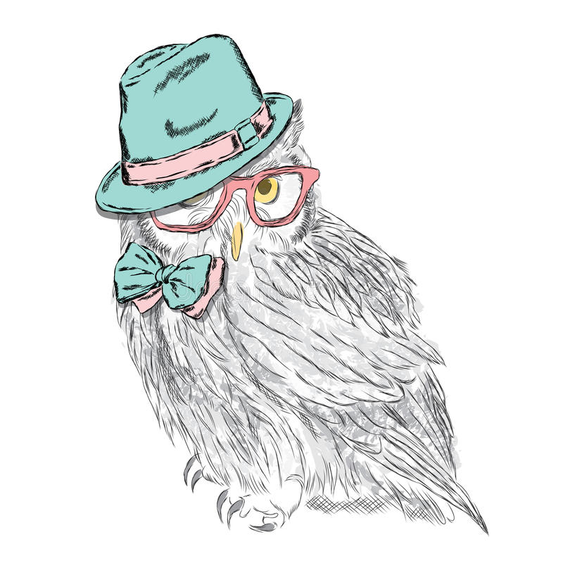 Funny owl wearing a hat and sunglasses. Vector illustration for greeting card, poster, or print on clothes. Hipster. Bird clothing. Fashion & Style royalty free illustration