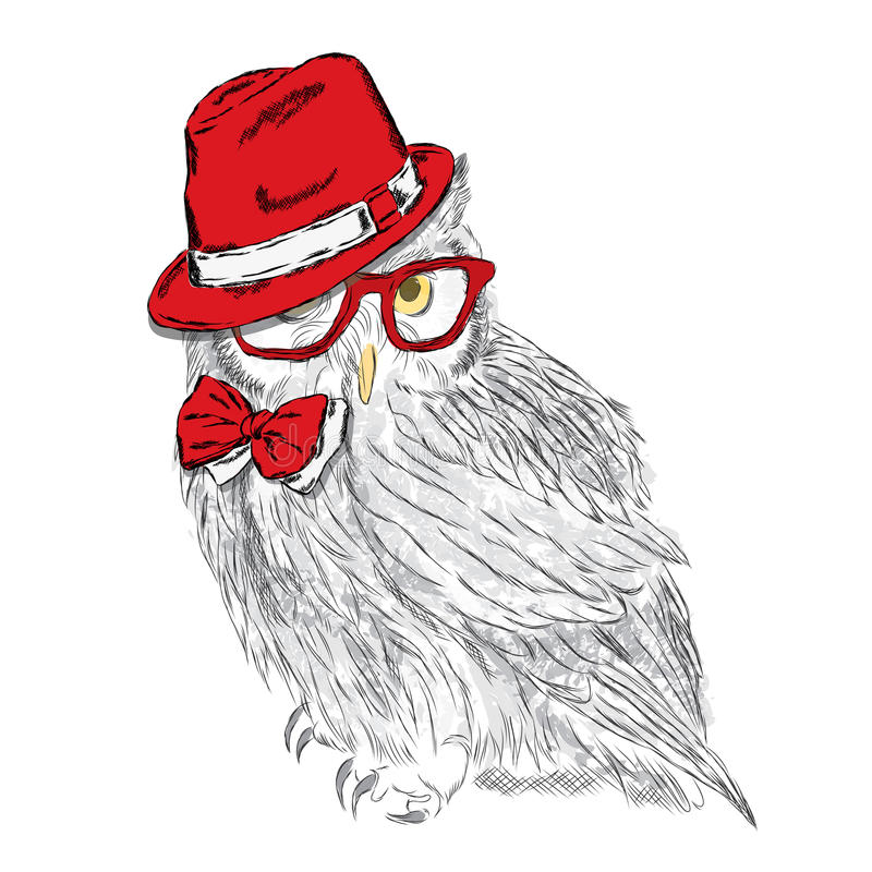 Funny owl wearing a hat and sunglasses. Vector illustration for greeting card, poster, or print on clothes. Hipster. Bird clothing. Fashion & Style stock illustration