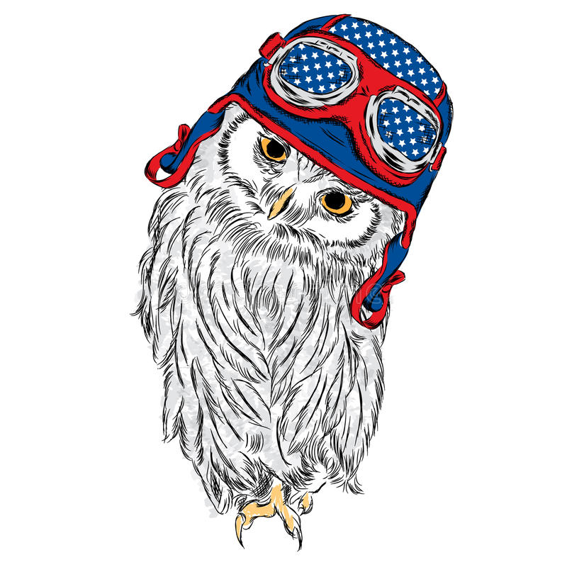 Funny owl wearing a hat and sunglasses. Vector illustration for greeting card, poster. Or print on clothes. Hipster. Bird clothing. Fashion & Style royalty free illustration