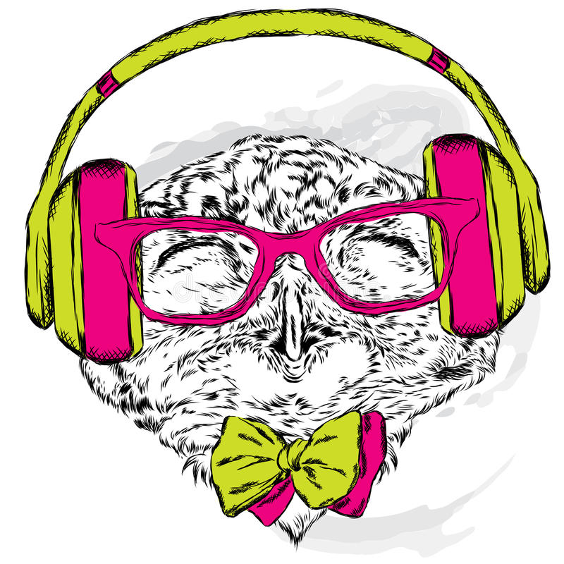 Funny owl wearing headphones and sunglasses. Vector illustration for greeting card, poster, or print on clothes. Hipster. Bird clothing. Fashion & Style. Music royalty free illustration