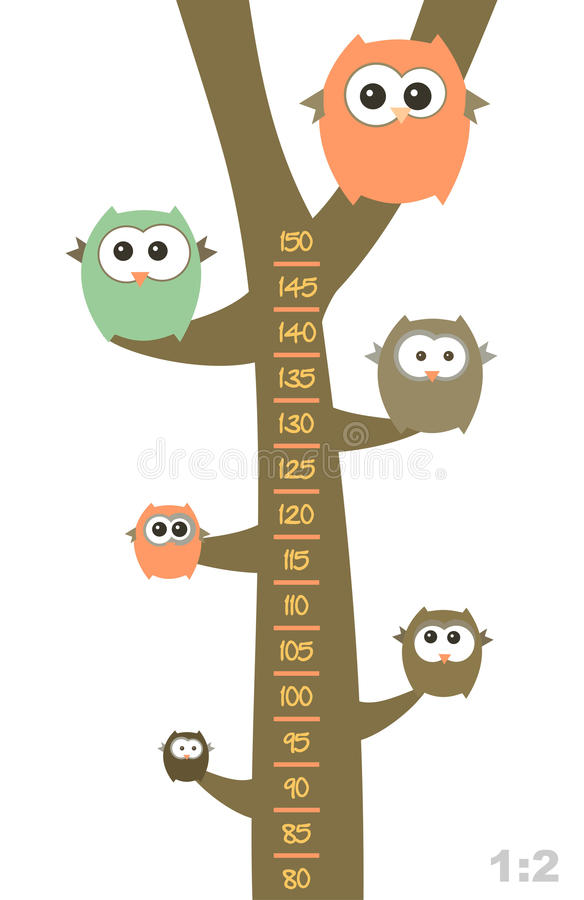 Funny owls on the tree. Baby height measure with funny owls on the tree (scale 1:2 stock illustration