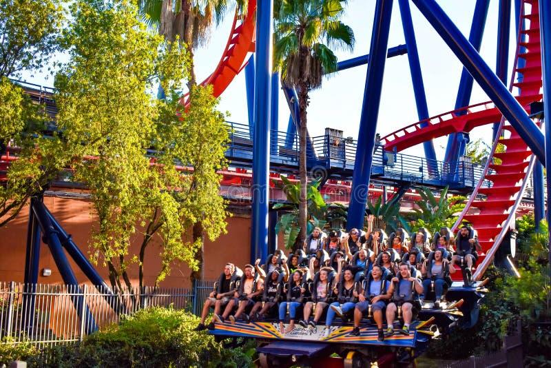 Funny people having fun terrifying trip in Rollercoaster at Bush Gardens at Bush Gardens Tampa Bay Theme Park stock images