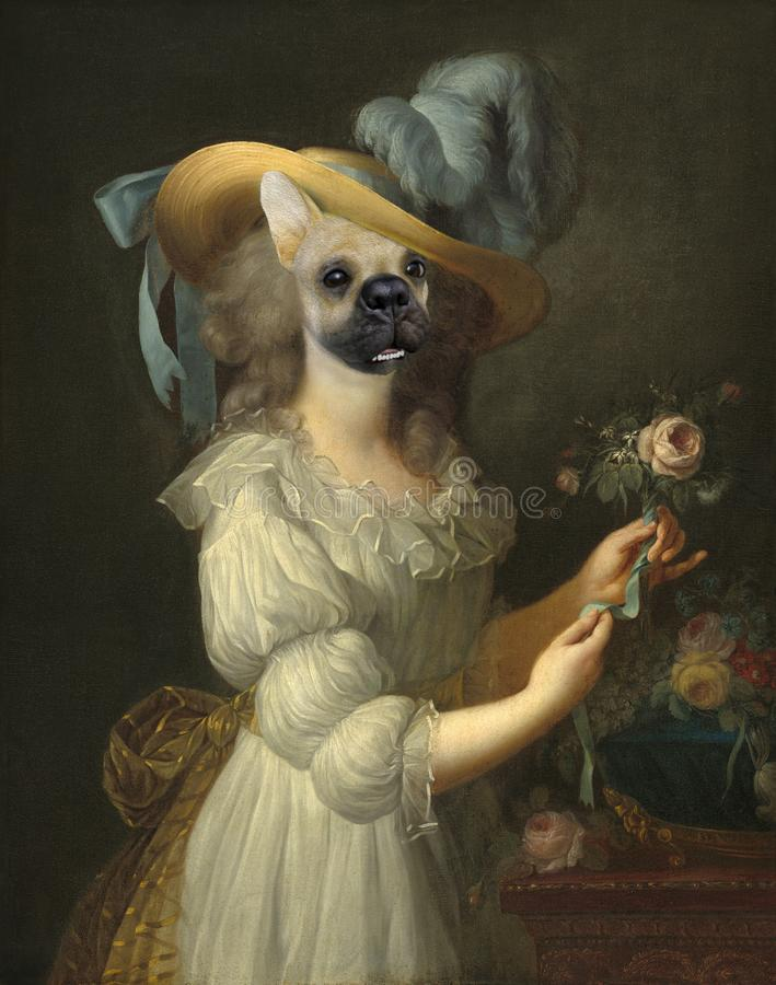 Funny Dog, Marie Anoinette, Surreal Oil Painting royalty free stock images