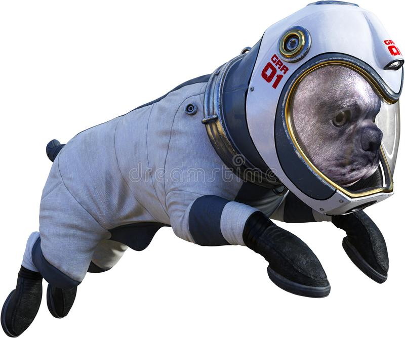 Funny Astronaut Dog, Space, Isolated, Spacesuit. Funny pet dog wearing an astronaut spacesuit. The space explorer animal is isolated on white. PNG file available stock image