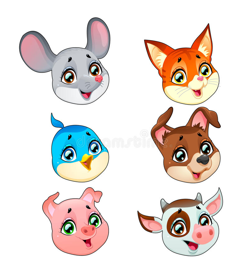 Funny pet faces stock photo