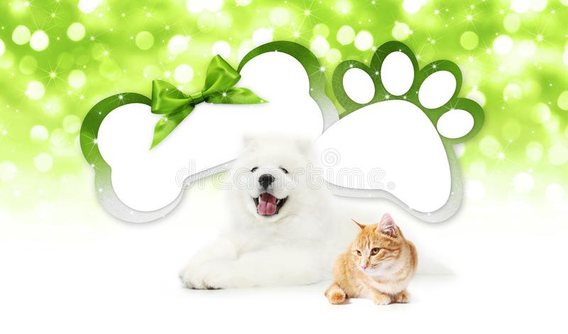 Funny pets cat and dog together with bone and paw imprint shape stock illustration