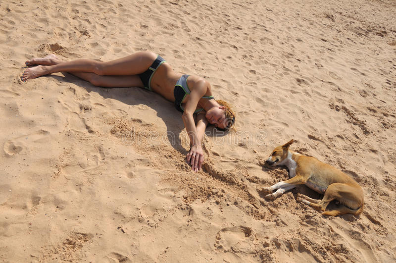 Funny Picture Of The Same Pose With Girl And Dog Royalty Free Stock Image