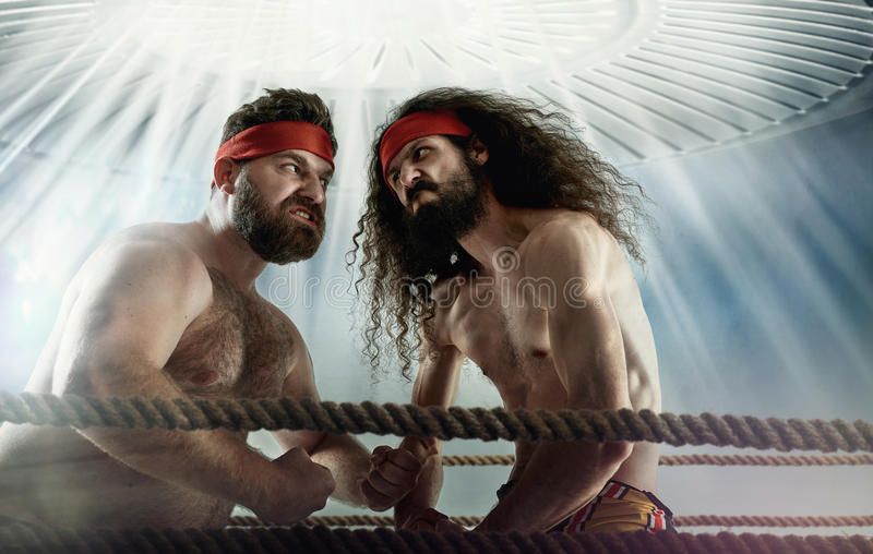 Funny picture of two antagonist opponents royalty free stock image