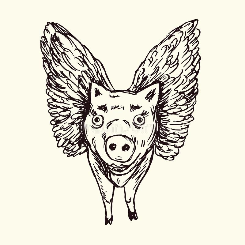 Funny piggy with lovely angel wings, front, hand drawn doodle, sketch in. Pop art style, black and white vector vector illustration