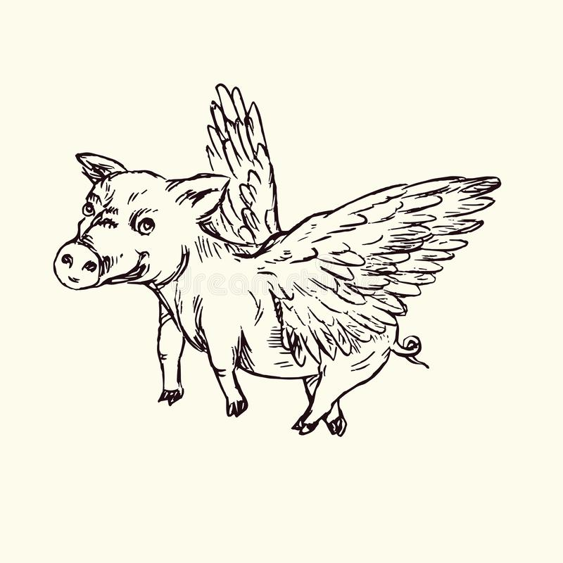 Funny piggy with lovely angel wings, hand drawn doodle, sketch. In pop art style, black and white vector illustration vector illustration
