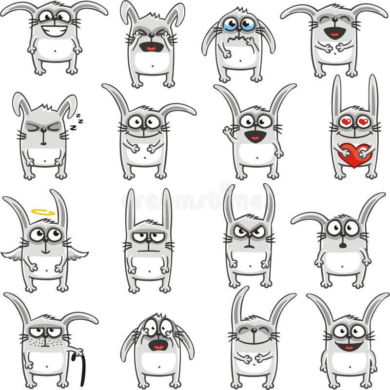 Funny rabbits (1) stock photo