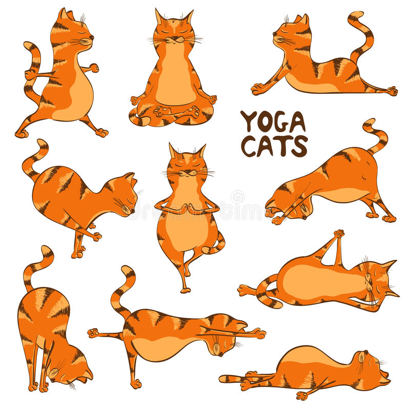 Funny red cat doing yoga position royalty free illustration