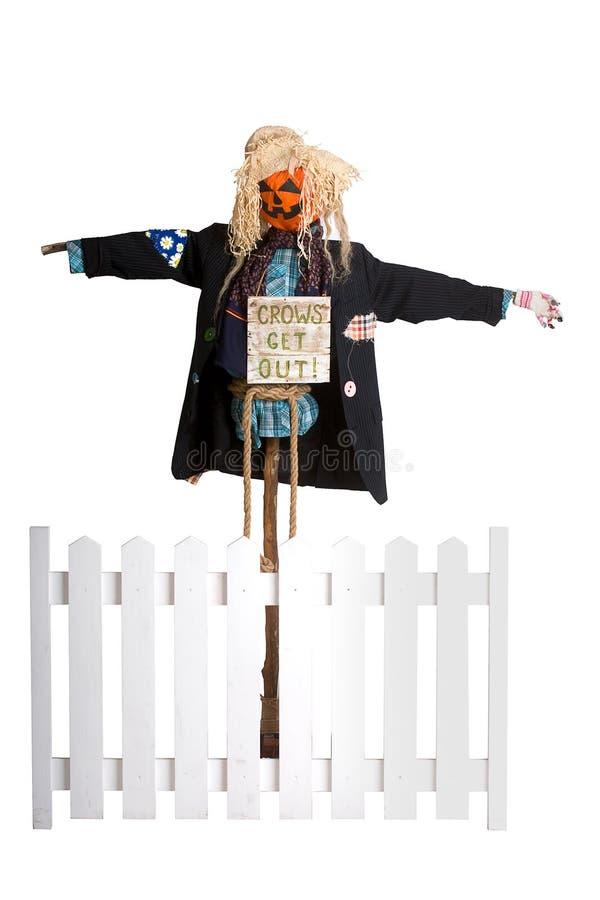 Funny scarecrow stock photo