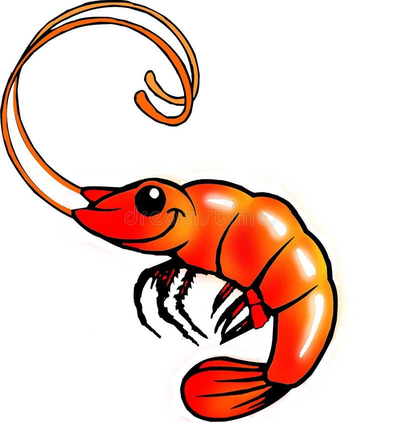 Funny Shrimp Stock Photography