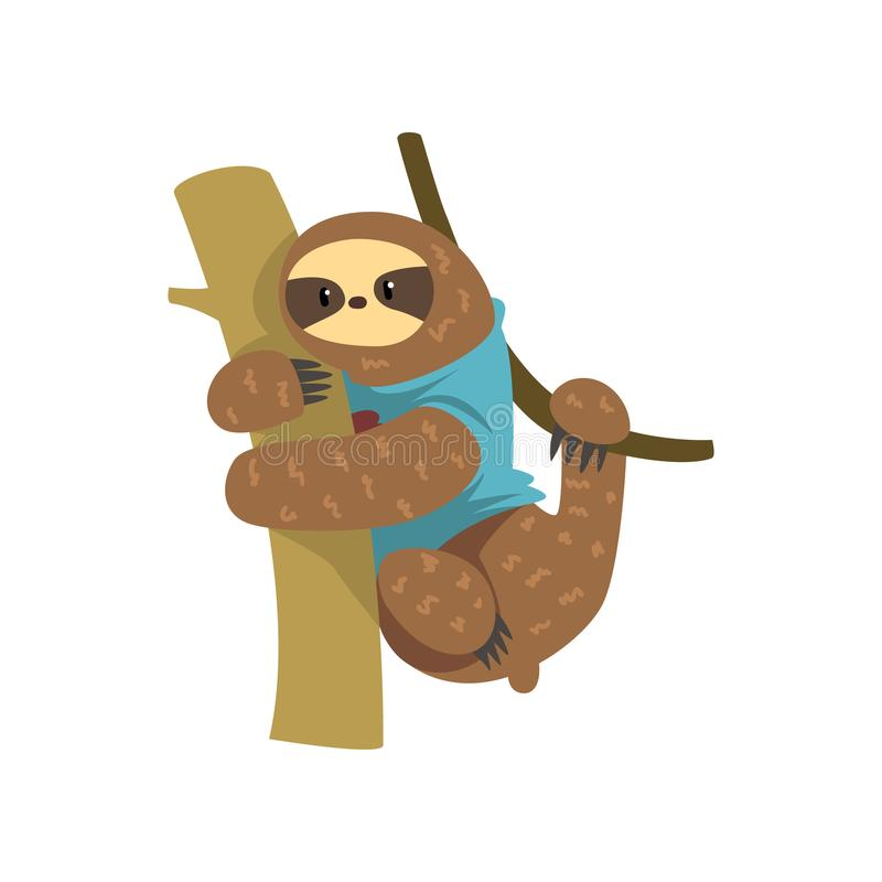 Funny sloth in blue t shirt hanging on the tree, lazy exotic rainforest animal character vector Illustrations on a white. Funny sloth in blue t shirt hanging on vector illustration