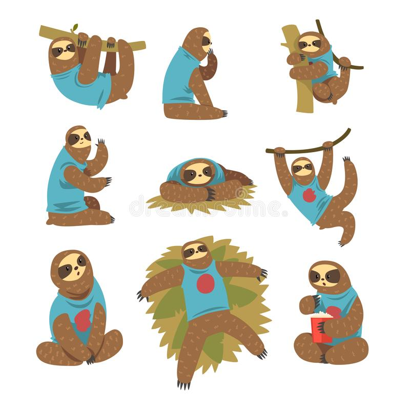 Funny sloths set, lazy exotic rainforest animal character in different postures vector Illustrations on a white. Funny sloths set, lazy exotic rainforest animal royalty free illustration