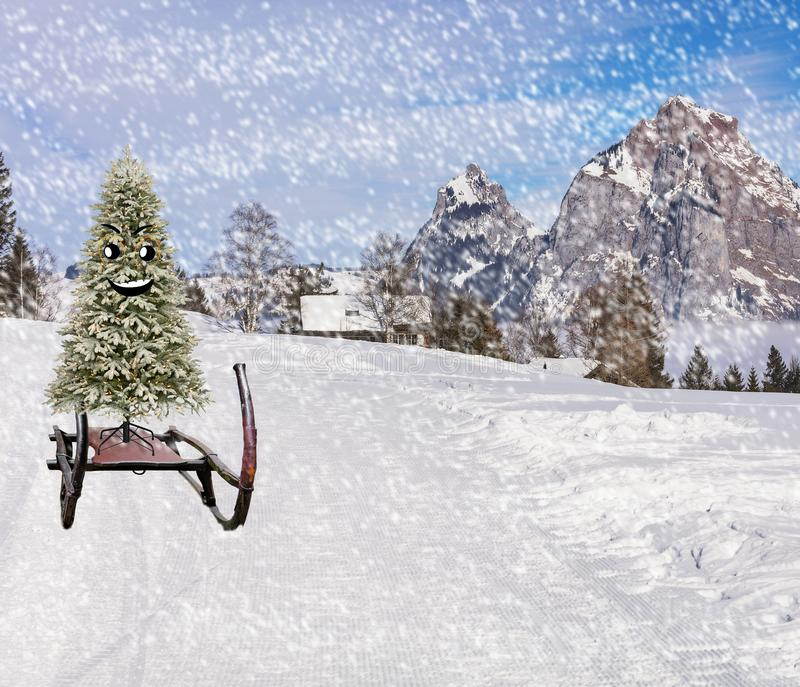Funny smiling happy christmas tree sliding down the ski hill slope in a winter mountain landscape in snowy cold weather royalty free stock photos