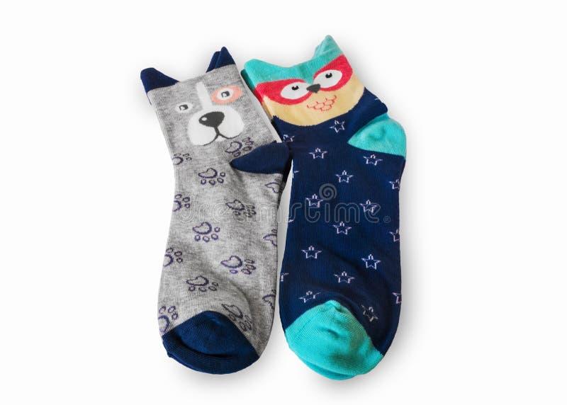 Funny socks. On white background royalty free stock image