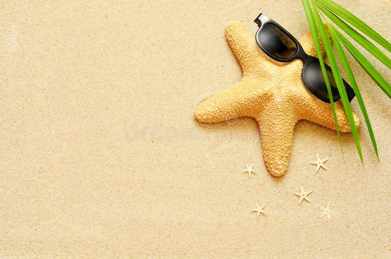Funny starfish on the summer beach with sand stock photography
