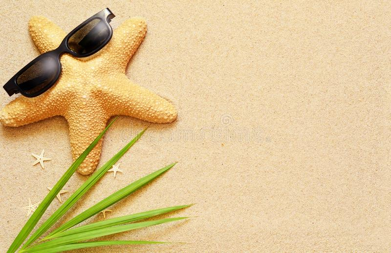 Funny starfish on the summer beach with sand stock images