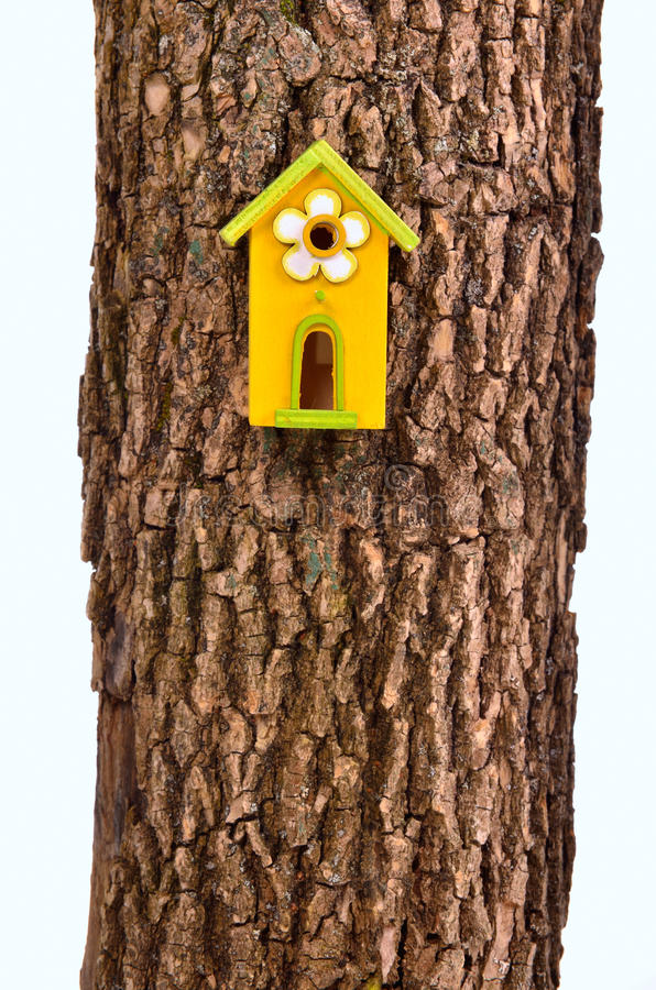 Funny Starling-house On A Stem Isolated Royalty Free Stock Photo