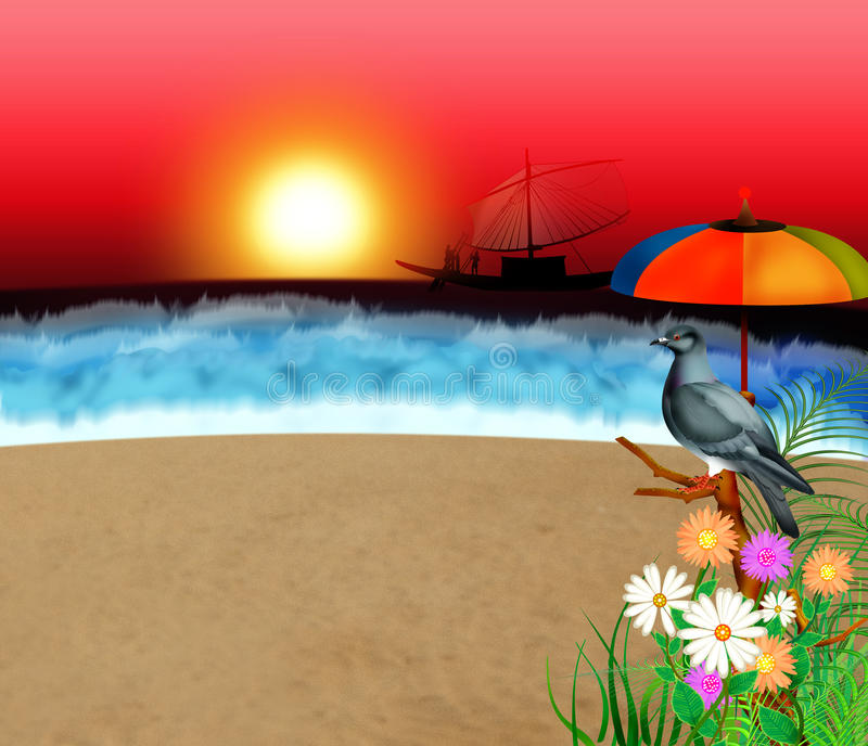Funny Sunset. A dove relax at beach on sunset