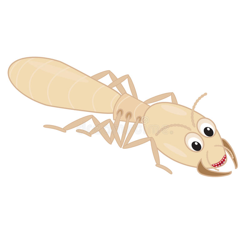 Funny termite cartoon. Teeth on a white background stock illustration