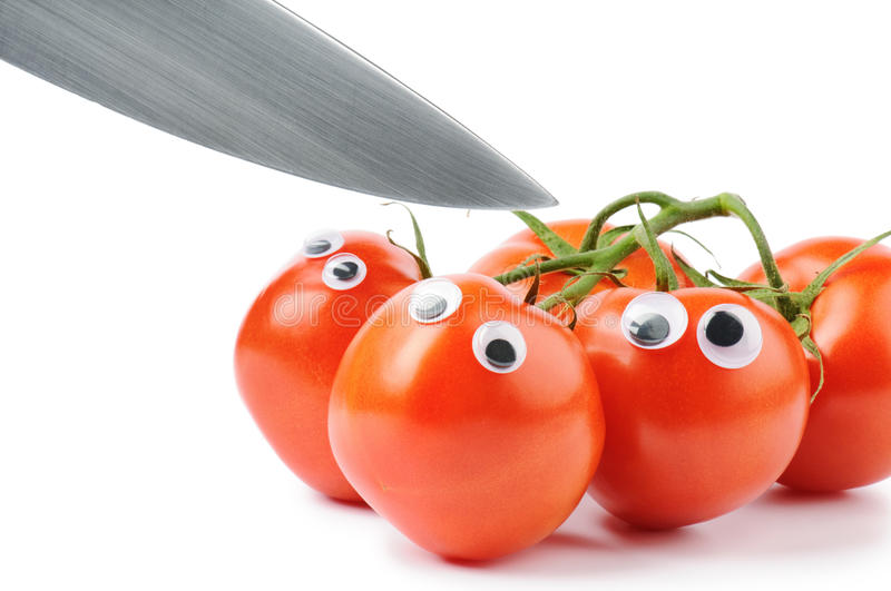 Funny tomatoes with googly eyes. Over white royalty free stock images