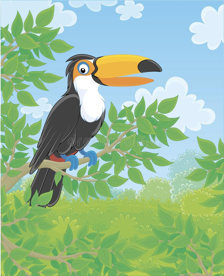Funny toucan with a big colorful beak royalty free illustration