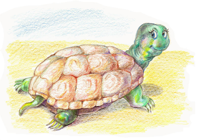 Funny turtle stock photography