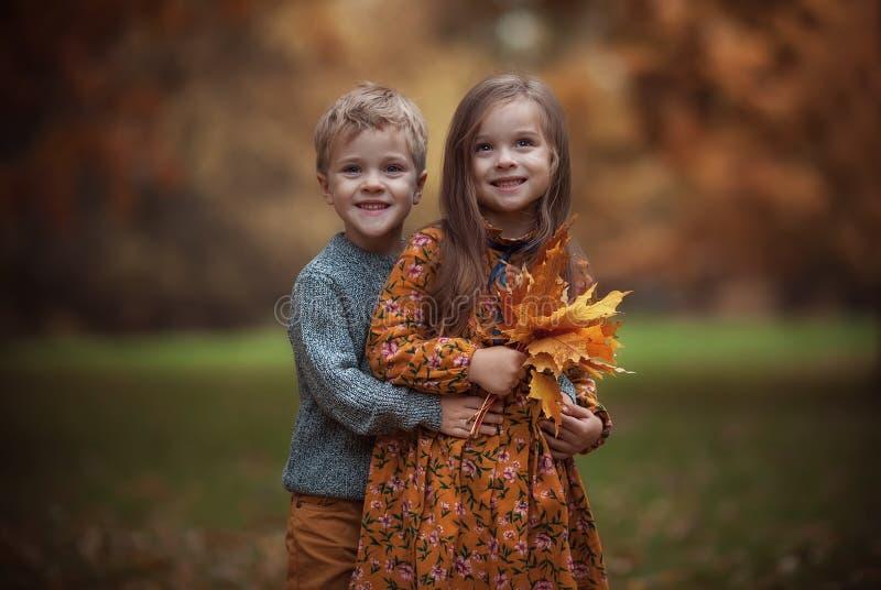 Funny tweins im Herbstpark lizenzfreie stockfotografie