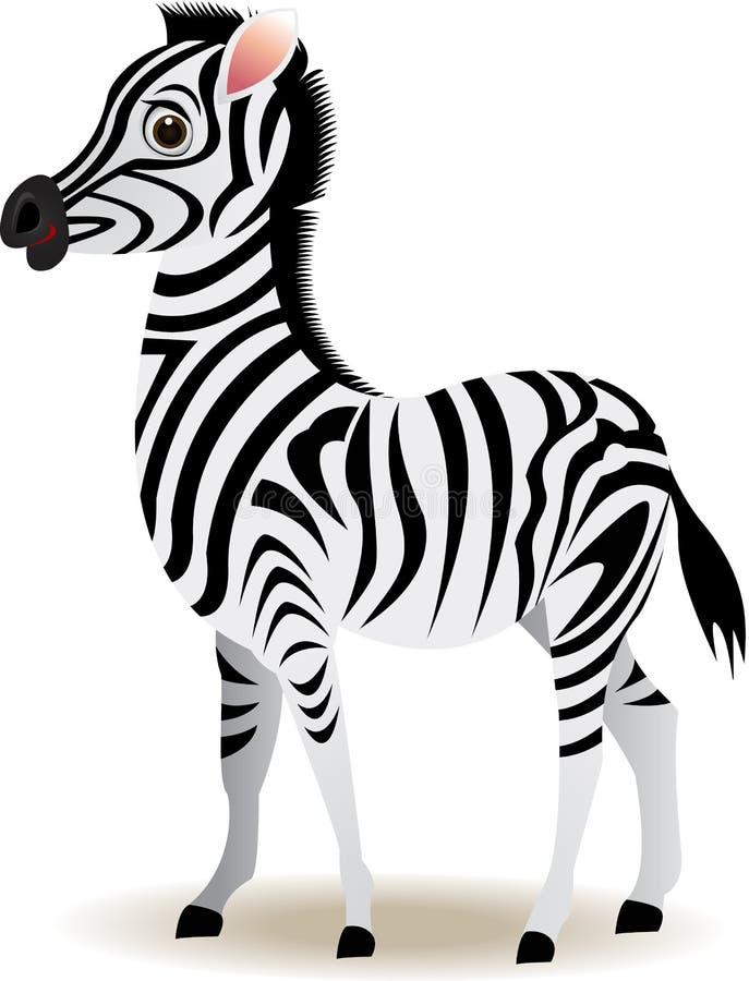 Funny Zebra Cartoon Stock Vector Illustration Of