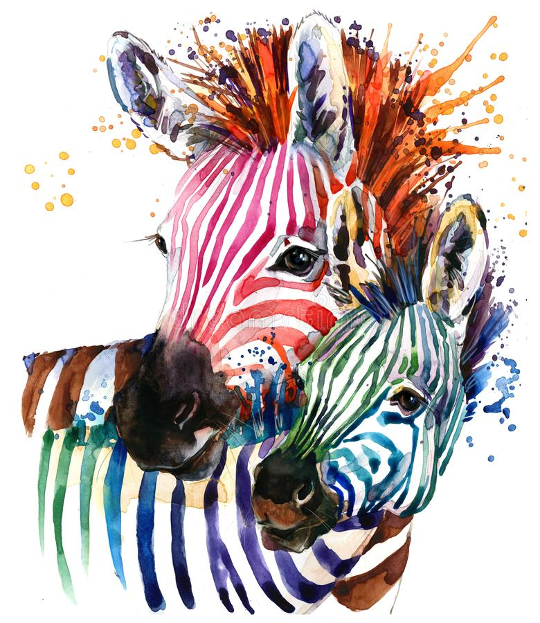 Funny zebra illustration with splash watercolor texture. rainbow background f. Zebra illustration with splash watercolor texture. rainbow background for fashion vector illustration