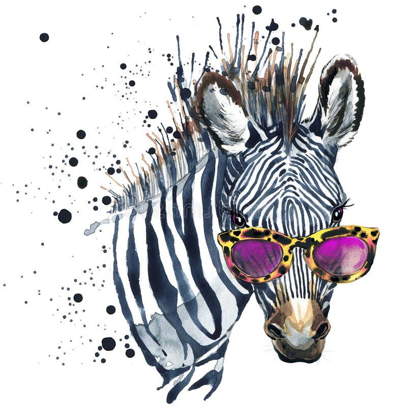 Funny zebra watercolor illustration. Funny zebra with watercolor splash textured background