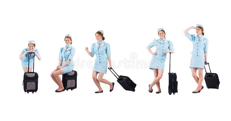 funy собрание stewardess стоковые фотографии rf