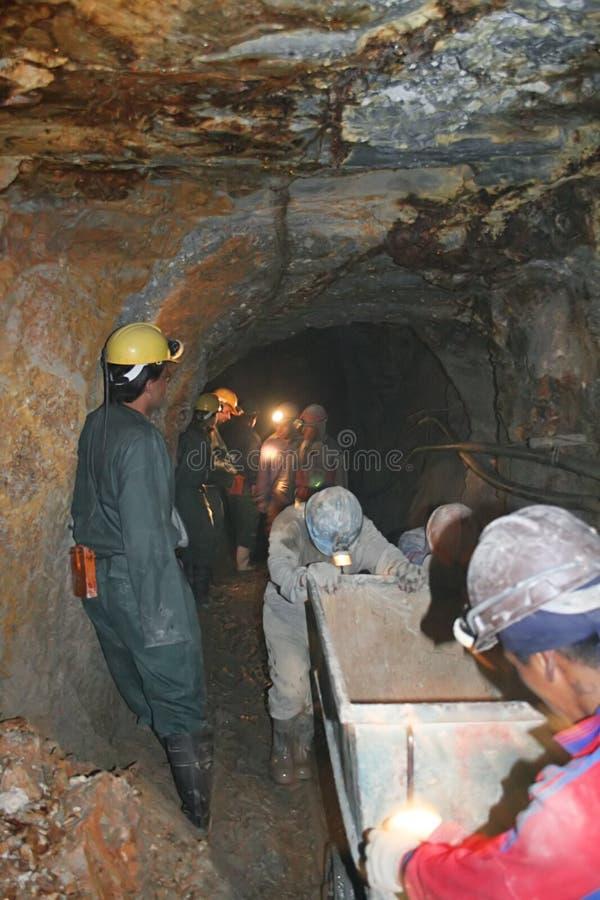 Funzionamento dei minatori fotografie stock