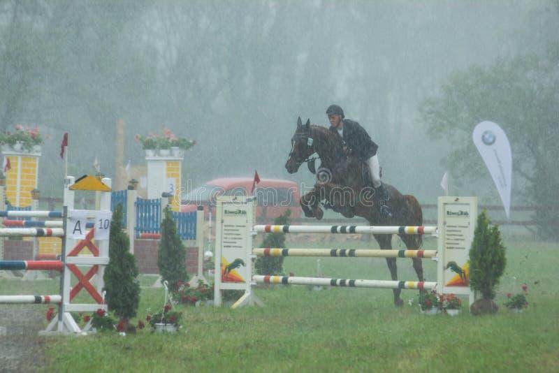 Funzionamento del cavallo nella pioggia un concorso degli ostacoli fotografia stock libera da diritti