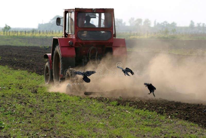 Funzionamento del coltivatore del campo immagine stock libera da diritti