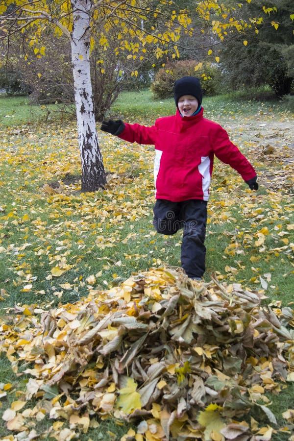 Funzionamento del ragazzo sulle foglie gialle fotografia stock libera da diritti