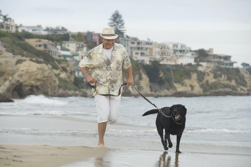 Funzionamento dell'uomo senior con il cane alla spiaggia fotografie stock
