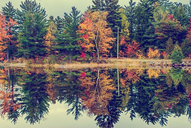Funzionamento della strada campestre da un lago in autunno - annata immagine stock libera da diritti