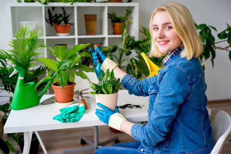 Funzionamento femminile del fiorista fotografia stock libera da diritti