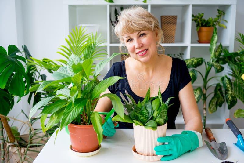 Funzionamento femminile del fiorista fotografie stock libere da diritti