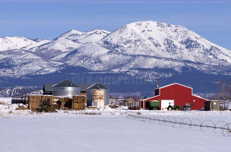Funzionamento moderno del ranch di bestiame in montagne di inverno fotografia stock libera da diritti