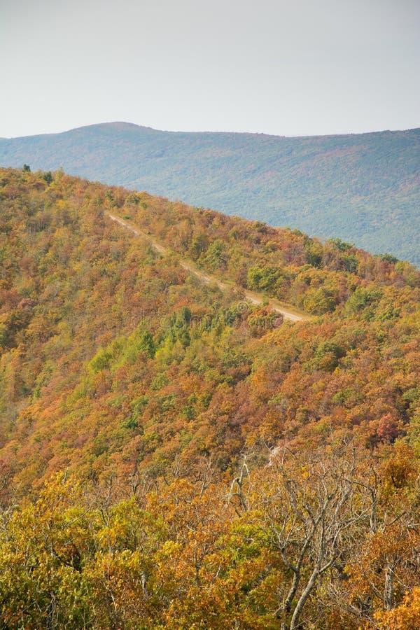 Funzionamento scenico della strada secondaria di Talimena sulla cresta della montagna fotografia stock libera da diritti
