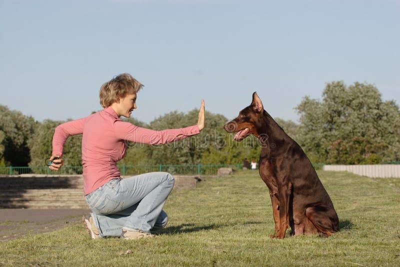 Funzionando con il cane fotografia stock libera da diritti